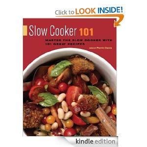 SlowCooker101Kindle