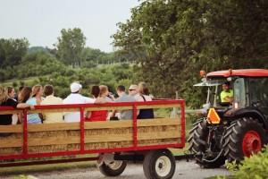 Kimmel Orchard |Family Fun in Omaha