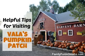 Helpful Tips for Visting Vala's Pumpkin Patch | Family Fun in Omaha