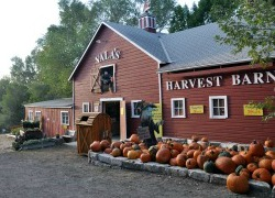 Vala's Harvest Barn