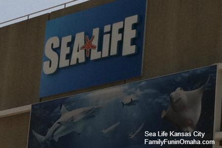 SeaLifeKC-1