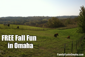 Free Fall Fun in Omaha | Family Fun in Omaha