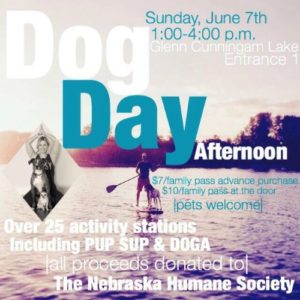 Dog Day Afternoon | The Neighborhood Offshore