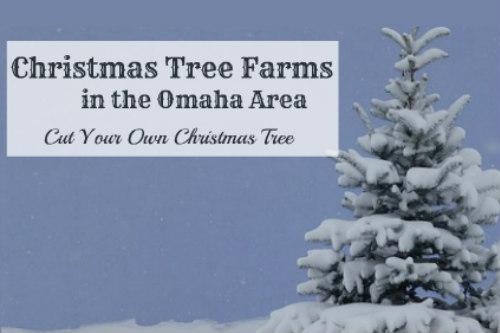 7 Delightful Christmas Tree Farms in the Omaha Area | Family Fun in ...