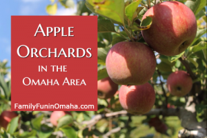 A closeup of apples hanging from a tree with overlay text that reads Apple Orchards in the Omaha area