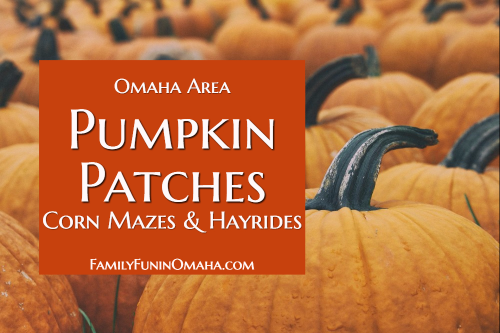 A close up of pumpkins with overlay text that reads Omaha Area Pumpkins Patches, Corn Mazes and Hayrides