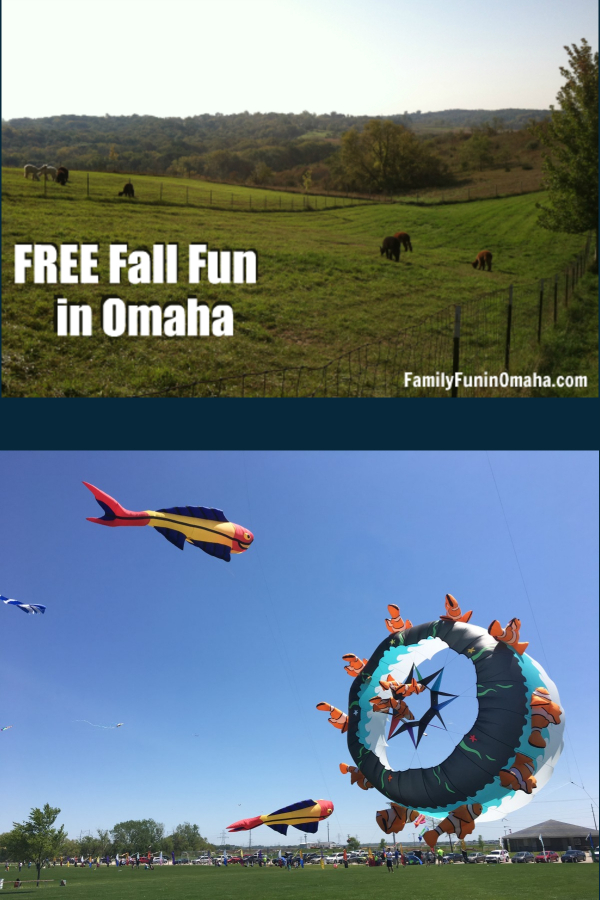 Collage of cows grazing and a group of people flying kites in a field with overlay text that reads Free Fall Fun in Omaha