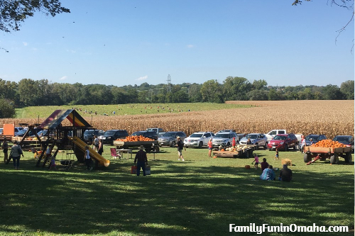 Markman Pumpkin Patch | Family Fun in Omaha