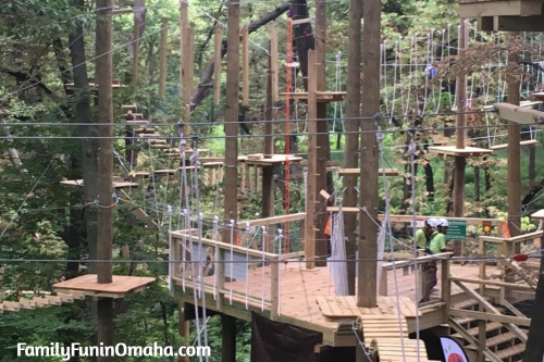 Climbing and obstacle course in the trees at Tree Rush Adventures.