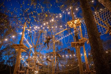 A tree climbing adventure with lights at Tree Rush Adventures.