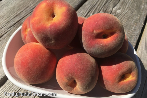 A bowl of peaches at Ditmars Orchard